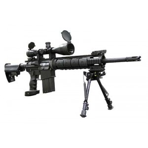 """DPMS Panther Arms SASS .308 Winchester/7.62 NATO 30-Round 18"""" Semi-Automatic Rifle in Black - LRTSASS"""
