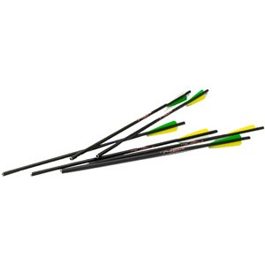 "Excalibur 20"" Firebolt Carbon Arrows 20 Pack 22CAV6"