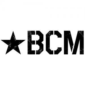 BCM  Pistol Lower Group w/BCM Pistol Receiver Extension