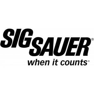 """Sig Sauer P320 Carry .357 Sig Sauer 14+1 3.9"""" Pistol in Black Nitron (SIGLITE Night Sights) - 320CA357BSS"""