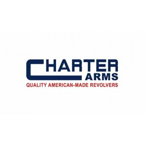 """Charter Arms Target Mag Pug .357 Remington Magnum/.38 Special 5+1 4.2"""" Pistol in Stainless - 73542"""