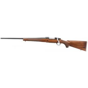 Rifles - Guns: Ruger and 20