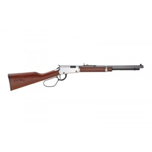 """Henry Repeating Arms Evil Roy .22 Long Rifle 16-Round 16.5"""" Lever Action Rifle in Silver - H001TER"""