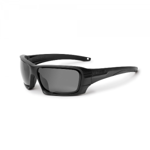 Black Frame Rollbar Sunglasses