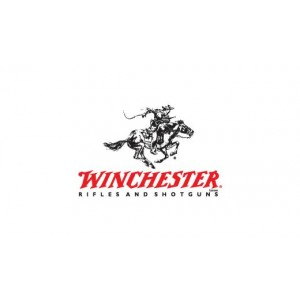 """Winchester XPR Vortex Scope Combo .243 Winchester 3-Round 22"""" Bolt Action Rifle in Matte Blued - 535705212"""