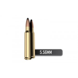 Silver State Armory Silver State Armory .223 Remington/5.56 NATO Soft Point, 63 Grain (20 Rounds) - 75005