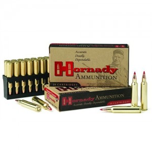 Hornady DGS .416 Ruger Dangerous Game Solid, 400 Grain (20 Rounds) - 82666