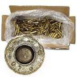 Federal Cartridge American Eagle .223 Remington/5.56 NATO Full Metal Jacket, 62 Grain (1000 Rounds) - XM855CS