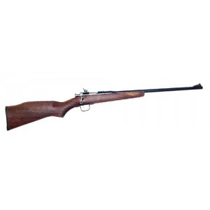 """Crickett Chipmunk .22 Long Rifle 16"""" Bolt Action Rifle in Stainless - 10001"""
