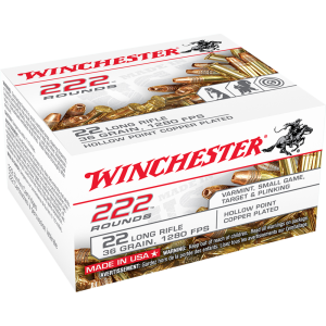Winchester .22 Long Rifle Copper Plated Hollow Point, 36 Grain (2000 Rounds) - 22LR222HPCS